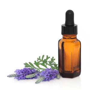 lavendar-homeopathy1